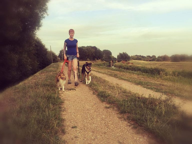 dog trainer andover